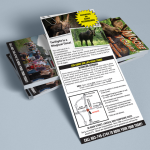 Pemi Valley Moose Tours Rack Card